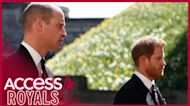 Prince Harry And Prince William Were 'At Each Other's Throats' During Prince Philip's Funeral, Friend Says