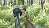 俄羅斯動物園奶人花豹不捨飼育員 樂被收編回家當大貓