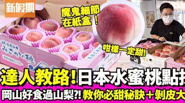 2021水蜜桃品種價錢比拼!日本大糖領/一宮/春日居唔係品種?專家教路水蜜桃點揀(內附點剝皮方法)|果欄情報 | 飲食 | 新假期