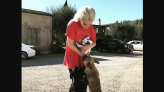 Lady Gaga's mom shares post-dognapping update: 'Everybody's doing as well as they can'