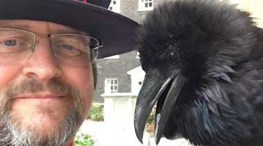 Tower of London's 'Queen' raven missing and feared dead