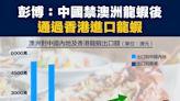 【行業數據】彭博:中國禁澳洲龍蝦後,通過香港進口龍蝦