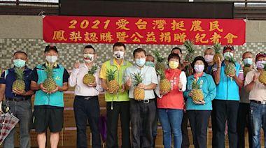 中國禁令未解 蔡培慧牽線企業買南投鳳梨助農民