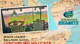 Visit Bank of the James Stadium, home of the Lynchburg Hillcats