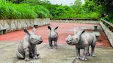 台北動物園唯妙唯肖犀牛雕塑 除了打卡還是保育意義