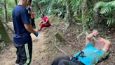 瑞芳三貂嶺瀑布步道 連2日虎頭蜂襲人釀1死3傷