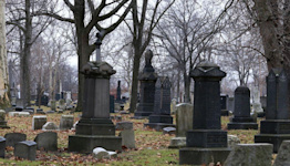 Here's The Difference Between A Cemetery And A Graveyard