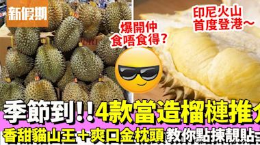 貓山王榴槤、金枕頭榴槤 4大熱賣品種2021上巿!即睇榴槤價錢+專家選購貼士|果欄情報 | 飲食 | 新假期
