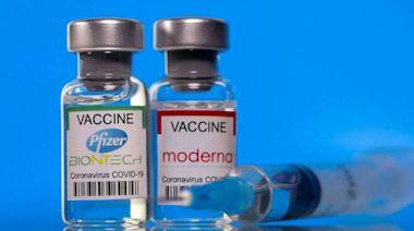 疫苗需求不墜 輝瑞、莫德納估今年聯手吸金1.5兆