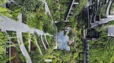 把自然帶回都市 他們期許建築成為環境解藥