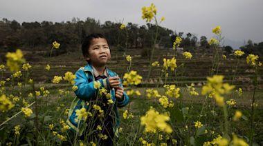 中共黨媒宣揚教師出資給留守兒童改善伙食 挨轟