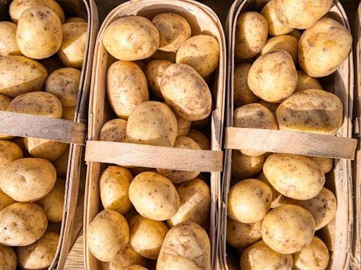 麥當勞炸薯條、紅蘿蔔和洋蔥都逃不掉!美國人蔬菜供應 「大農戶」比爾蓋茲大多有分