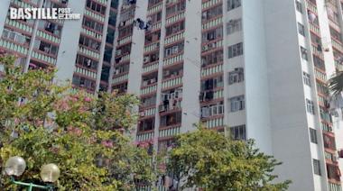 大埔7惡漢扑車窗搶走車Cam 打傷的哥乘客 | 社會事