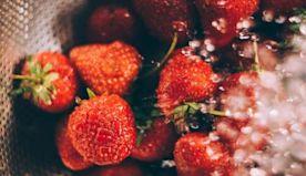 32 Best Foods to Combat Quarantine Stress