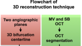 3D reconstruction of coronary artery bifurcations from coronary angiography and optical coherence tomography: feasibility, validation, and reproducibility