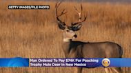 Man Ordered To Pay $74K For Poaching Trophy Mule Deer In New Mexico