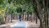 雲林濱海一日遊|單車收集口湖、四湖濕地生態,吃頓海口漁村最鮮海味