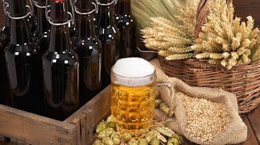 推薦十大啤酒酵母保健食品人氣排行榜【2021年最新版】