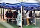政府突擊抽查紅磡崇愛樓居民強檢報告 14人違強檢令