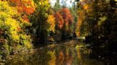 Trees are changing colors across the country, so how is NC's fall foliage going to look?