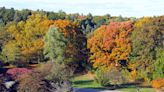 Must-see fall foliage trips around Massachusetts, according to AAA