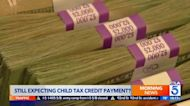 Some families still haven't received child tax credits