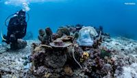 Philippines reef littered with PPE face masks