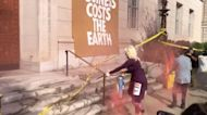 Protesters Demand Climate Action Outside Chamber of Commerce in Washington