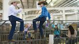 6 kid-friendly things to do at the Larimer County Fair