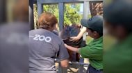 Hippos create colorful paintings at U.S. zoo