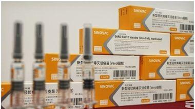 研究指科興疫苗對巴西變種病毒50%免疫 接種首針14日後見效