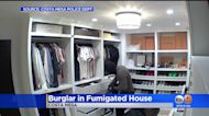 Burglar Breaks Into Fumigated Home