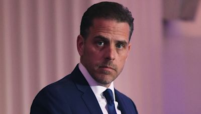 Hunter Biden and wife Melissa Cohen still 'very in love' three months into marriage: report