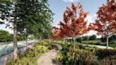 都市藏落羽松廊道!綠意新景點雙溪濕地公園