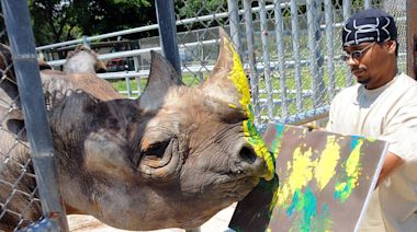 Loss of Zoo Miami animal ambassador leaves 'hole in the hearts of all who loved him'