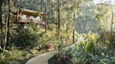 The Best Luxury Lodges in Rwanda