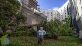 Still standing, still occupied: Little house swallowed by Gables mega development