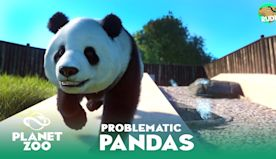 Giant Panda Habitat Preparations - Ruhr Zoo - Planet Zoo Franchise Mode Ep 14