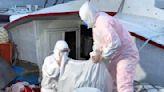 海巡破獲非法走私魚翅乾貨 總價值約600萬 | 蕃新聞