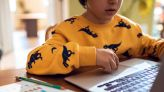 Cybersecurity tips for online learning as schools tap hybrid learning amid delta variant