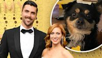 Brittany Snow fosters cute dog with new husband Tyler Stanaland