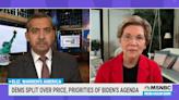 MSNBC host to Elizabeth Warren: Should some Facebook officials face 'criminal investigations?'