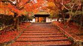 包場紅葉寺院任你遊!京都紅葉季最強住宿方案