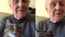My Heart Swelled 2 Sizes While Watching Anthony Hopkins Play Piano For His Cat