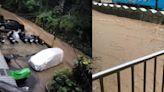 烟花狂炸北市山區「一夜雨量170毫米」 北投淹水停電、路樹壓車