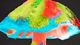 Depression: Eating mushrooms may reduce risk