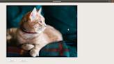 【沒錢買ps,PyQt自己寫】Day 12 - 建立一個可以縮放圖片大小的顯示器 (基於 QImage 使用 OpenCV) - iT 邦幫忙::一起幫忙解決難題,拯救 IT 人的一天
