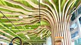 嘉大開心樹展空間 展現柳杉LVL創新與製作實力