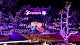 【打卡景點】屏東四重溪溫泉季,桃紅燈海超夢幻!