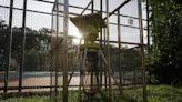 雨後蚊患易惡化 蟲害專家指太陽能滅蚊機有效殺蚊